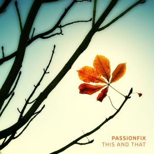 Passionfix - This and That